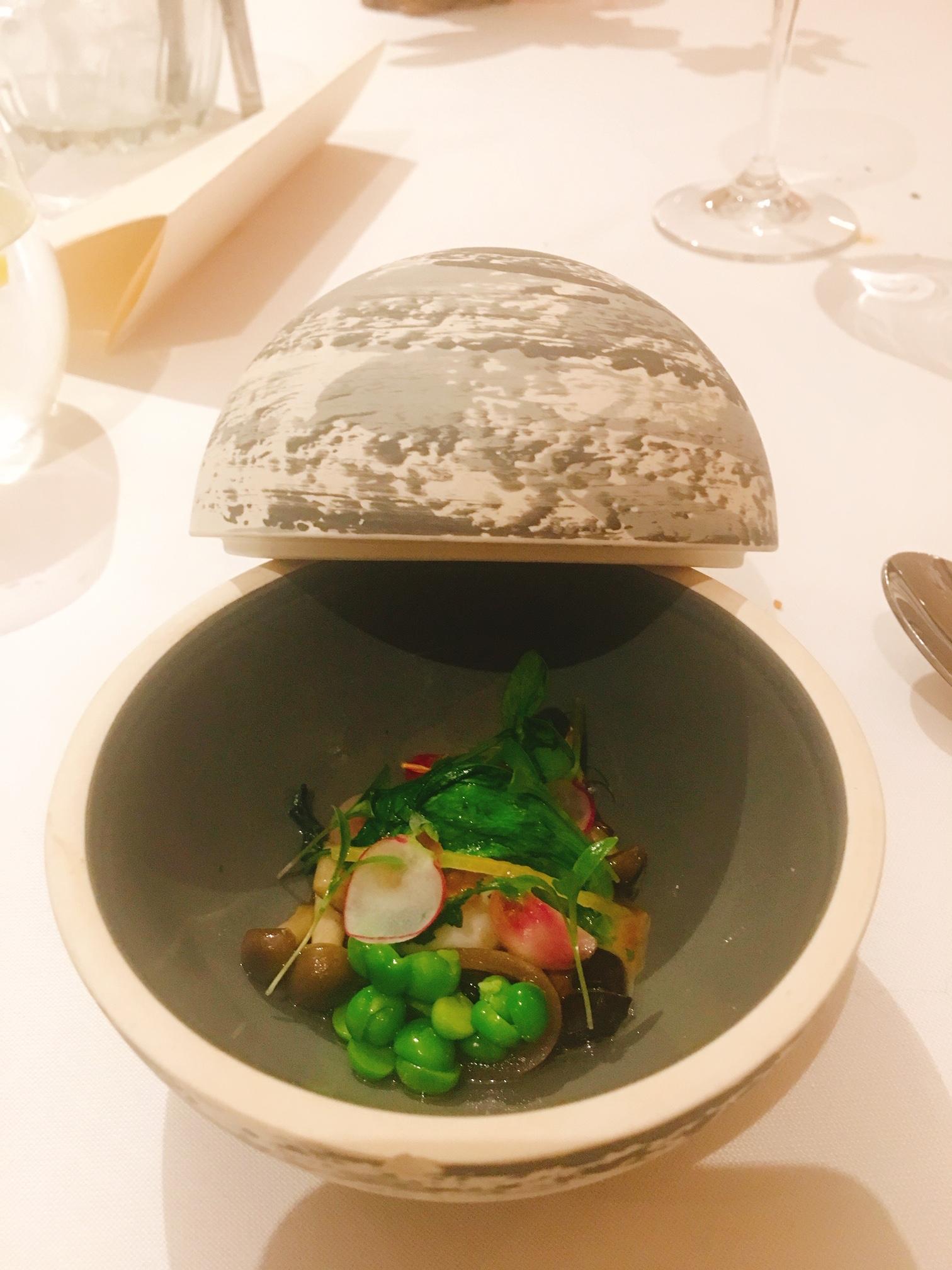 soup-dish-kaylin-pieterse-exam